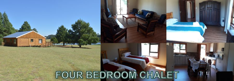 Greystone Lodge - Dullstroom Accommodation