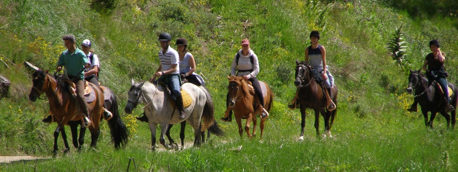 Horse Riding - Activities