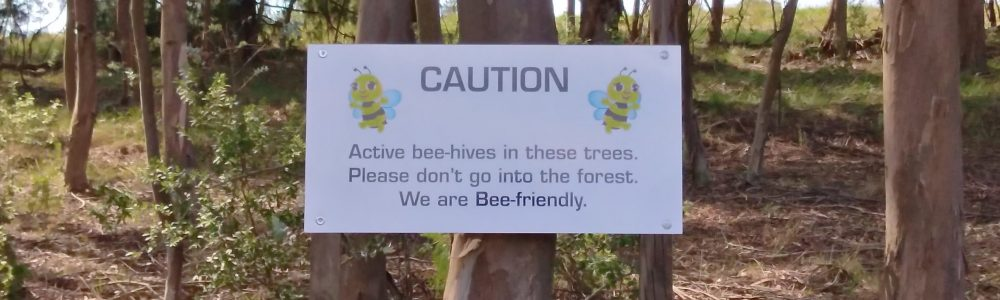 We are Bee-Friendly!