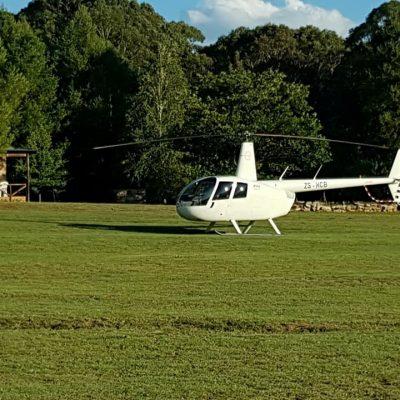 Chopper Friendly